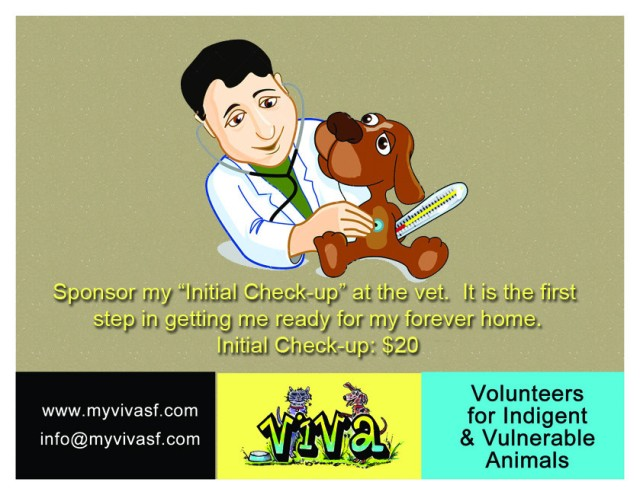 $20 Initial Check-Up Donation Click Image